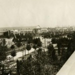 A black and white photograph taken from the top of a building. The view is of the front of a plaza building. The view shows the tree-lined streets in front f the plaza and a few other buildings are in the far distance.