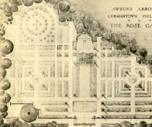 a drawn map of awbury's rose garden