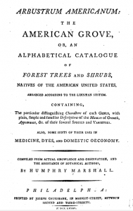 page from Arbustrum American, 1785, by Humphry Marshall