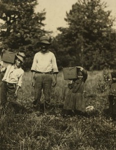 a photograph of a young boy and a young girl on either side of an adult man. The children are carrying boxes of cranberries on their shoulders.