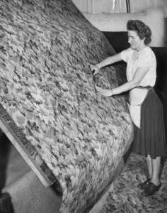 photograph of a woman smoothing a rug. the rug is proped up at a 45 degree angle and the worker is running her hands of the rug, from a standing positon next to it.