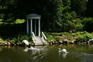 A color photograph of the Swan Pond at Morris Arboretum, showing swans and a classical-style folly
