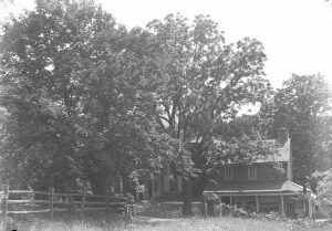 A black and white photograph of Mill Grove, home of John Audubon, showing house and trees