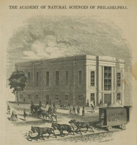 An engraving from a magazine depicting the Broad and Sansom location of the Academy of Natural Sciences.