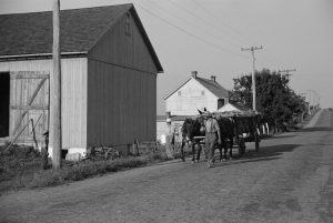 A black and white photograph of a farmer in rural Pennsylvania leading a horse drawn wagon full of Tobacco.
