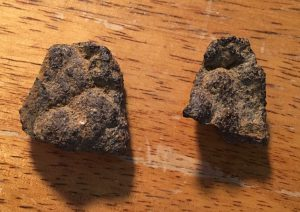A photograph of two small pieces of bog iron.