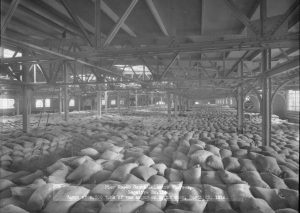 Around 8,700 tons of raw sugar at Philadelphia's Pier 40 in 1916.