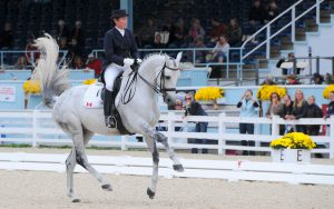 color photo of rider competing in Devon horse show, September 2012.