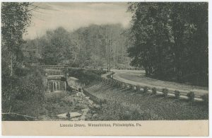 A view of an S-Curve on the Lincoln Drive. To the left of the curve is a creek, and a forest surrounds the scenic road.