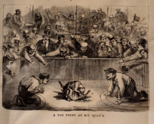 a black and white illustration of a crowd of men surrounding two dogs fighting