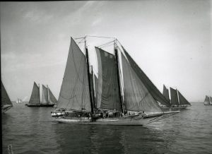 This black and white photograph shows a large oyster schooner boat surrounded by several similar vessels. The boat has three large main sails and several workers are visible on the deck.