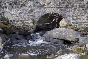 This color photograph shows a stream running underneath a stone bridge at Nockamixon State Park.
